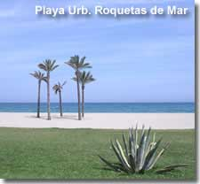 Palm trees on Roquetas del Mar beach