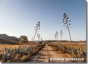Natural landscape in Almeria