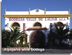 Laujar wine Bodega in the Alpujarra of Almeria
