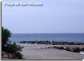 Greenery and palm tree decorating San Nicolas beach