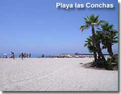 Palm trees on Las Conchas beach in Almeria