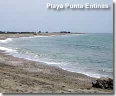 Rural beach at Puntas Entinas