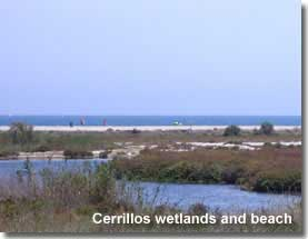 Playa Cerrillos wetlands and beach