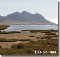 Las Salinas Cabo de Gata on the GR-92 walking trail in Andalucia
