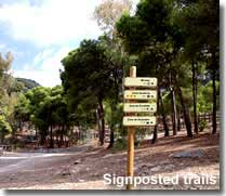 Signposted walking trails from Castala Park