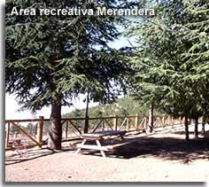 Merendera Picnic area in the Filabres mountains of Almeria