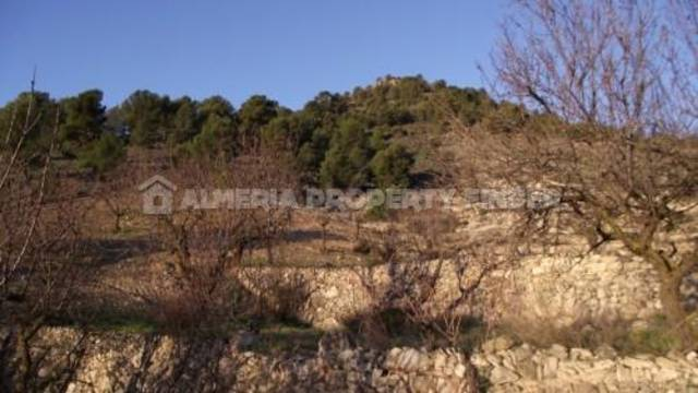 APF-239: Country house for Sale in Albox, Almería