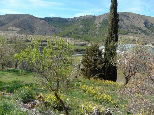 APF-3428: Land for Sale in Oria, Almería