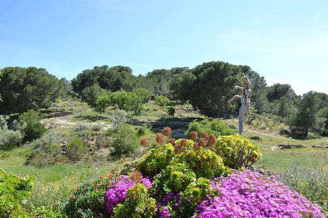 OLV1247: Cortijo for Sale in Lubrin, Almería