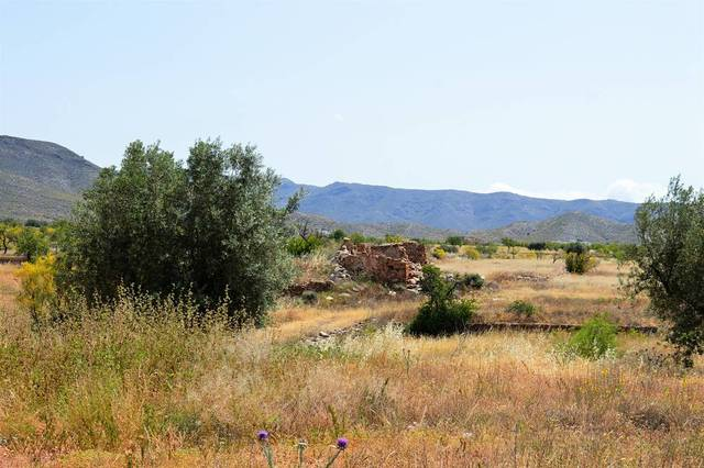 OLV0727: Cortijo for Sale in Uleila del Campo, Almería