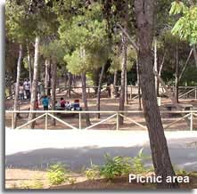 Picnic area of Castala park