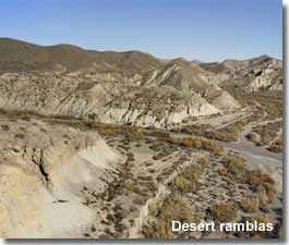 Walking in the ramblas of Tabernas desert in Almeria