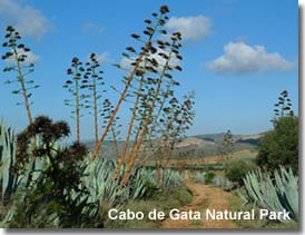 Walking trail in the Cabo de Gata Natural Park