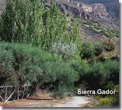 Walking trails in the Sierra Gador mountains of Almeria in Spain